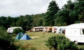 Birchwood Tourist Park