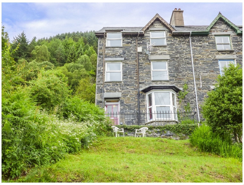 Click here for more about 1 Isygraig